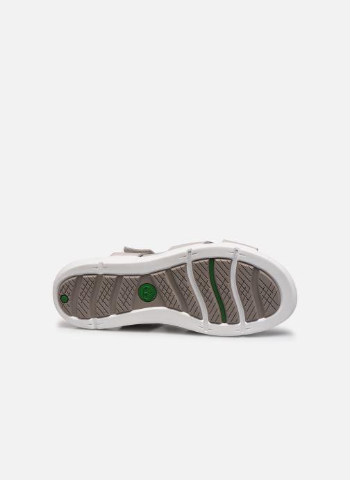 Sandales et nu-pieds Timberland Wilesport Leather Sandal Gris vue haut