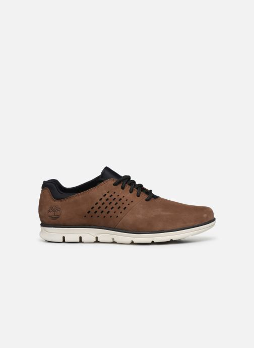 Sneakers Timberland Bradstreet Perf'd PT Oxford Marrone immagine posteriore