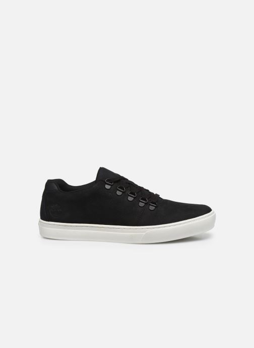 Sneakers Timberland Dauset Leather Alpine Oxford Nero immagine posteriore