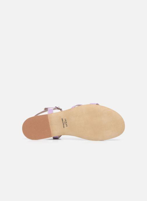 Sandali e scarpe aperte Jonak AMELIKA Viola immagine dall'alto