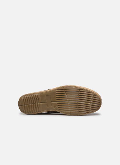 Zapatos con cordones Roadsign Lenkis Beige vista de arriba