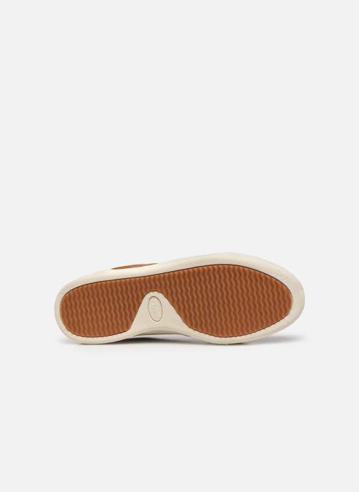 Sneakers Chevignon Snight Bruin boven