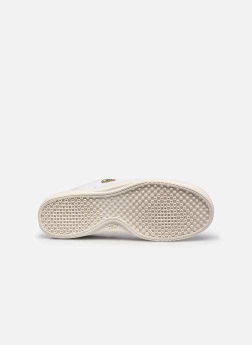 Sneaker Nike Wmns Nike Court Vintage Prm weiß ansicht von oben