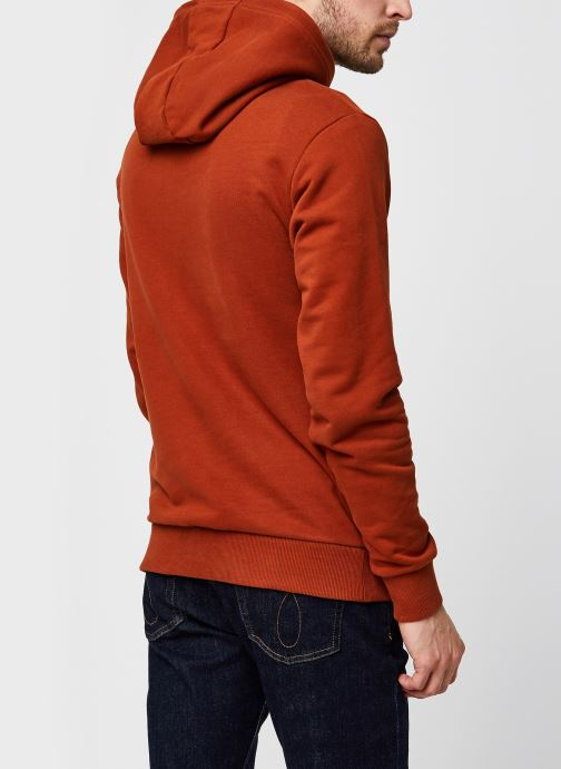 Vêtements Calvin Klein Logo Embroidery Hoodie Orange vue portées chaussures