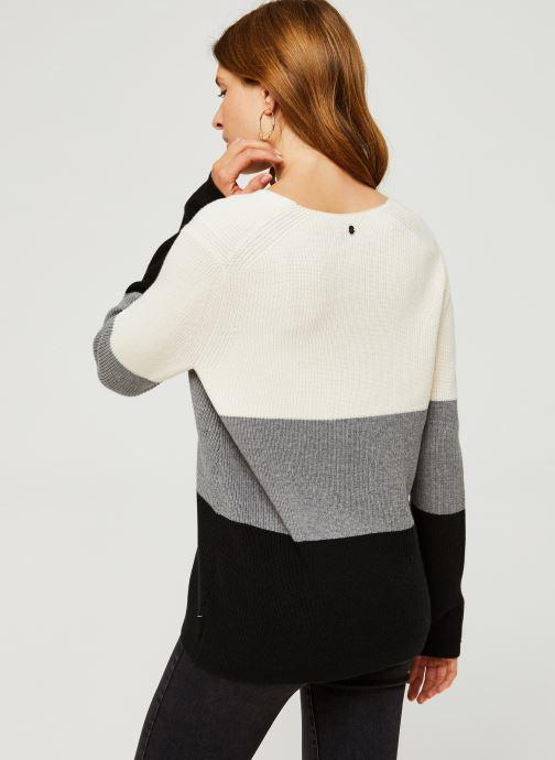 Vêtements Calvin Klein Color Block Sweater Beige vue portées chaussures
