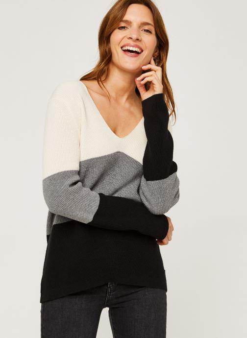 Vêtements Calvin Klein Color Block Sweater Beige vue détail/paire