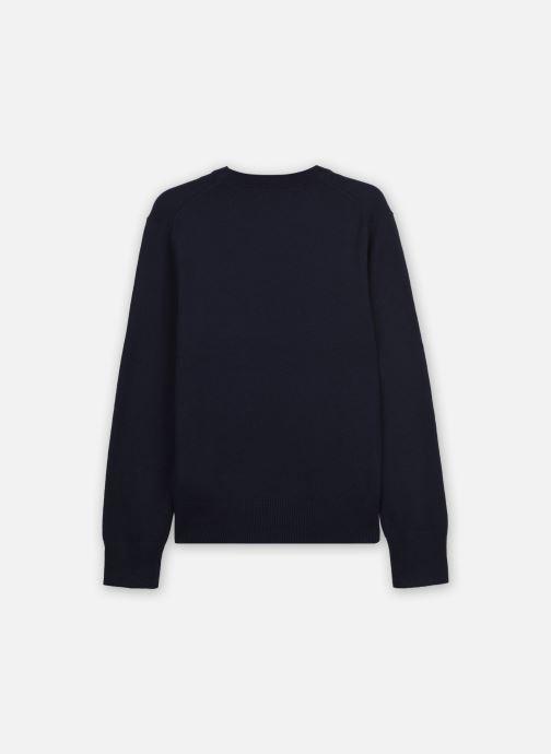Vêtements Polo Ralph Lauren LS CN-TOPS-SWEATER Bleu vue portées chaussures