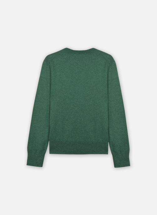 Vêtements Polo Ralph Lauren LS CN-TOPS-SWEATER Vert vue portées chaussures