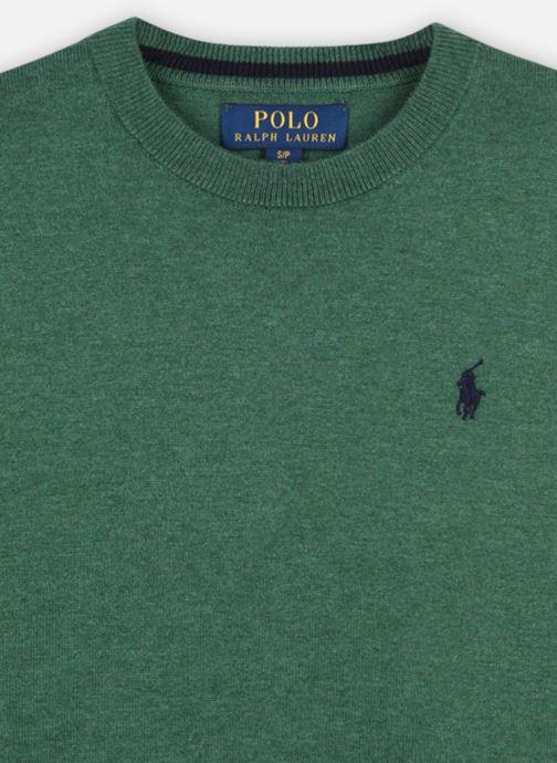 Vêtements Polo Ralph Lauren LS CN-TOPS-SWEATER Vert vue face