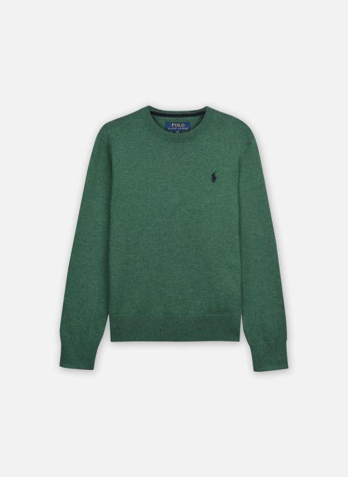 Vêtements Polo Ralph Lauren LS CN-TOPS-SWEATER Vert vue détail/paire