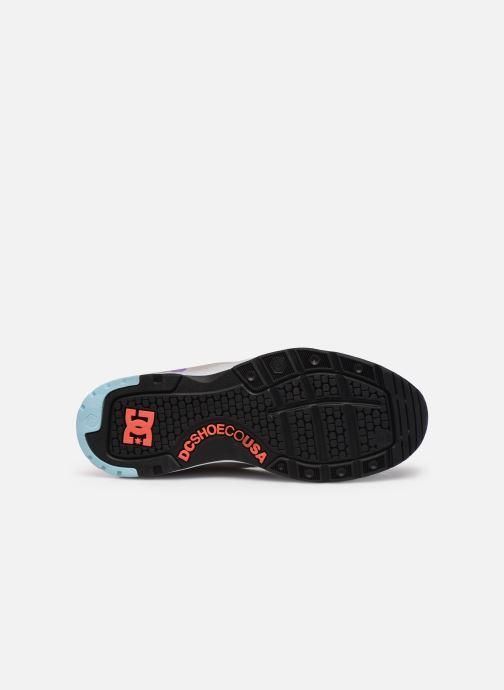 Deportivas DC Shoes E.Tribeka Se Blanco vista de arriba