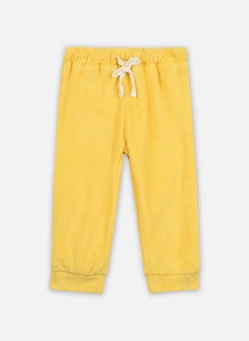 Pantalon Casual - Pant Jogging Bruce Velvet