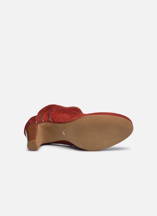 Stiefeletten & Boots Georgia Rose Lyzzie rot ansicht von oben