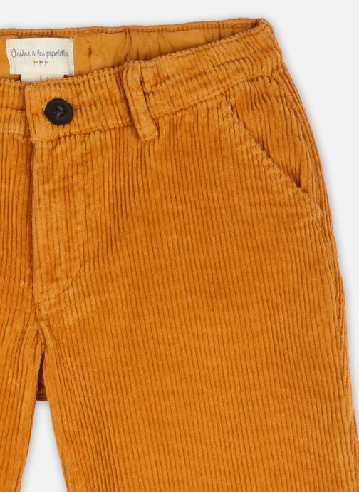 Vêtements Arsène et les Pipelettes Pantalon Tugay Marron vue face