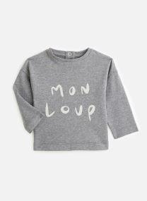 Ash Grey / Mon Loup