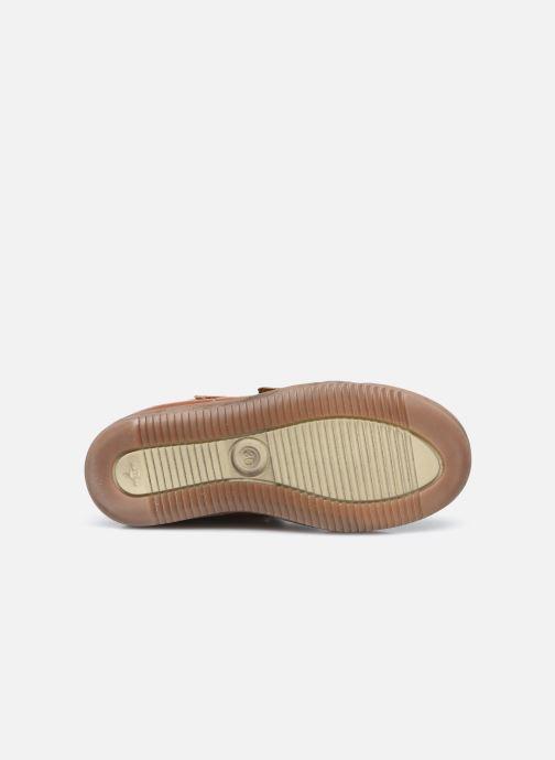 Baskets Froddo G3110151 Marron vue haut