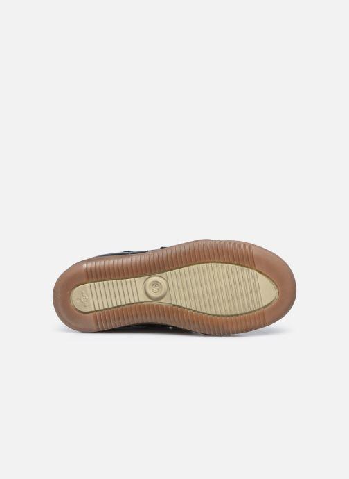 Baskets Froddo G3110151 Bleu vue haut