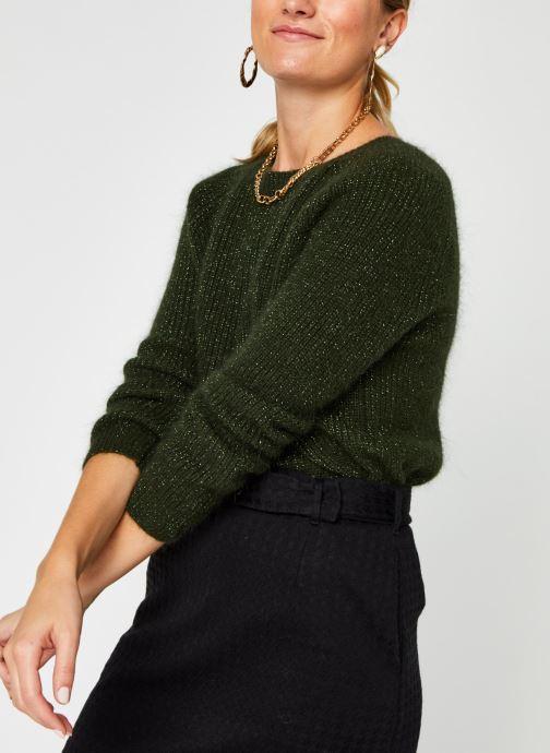 Vêtements Garance PULL FILDOR Vert vue détail/paire