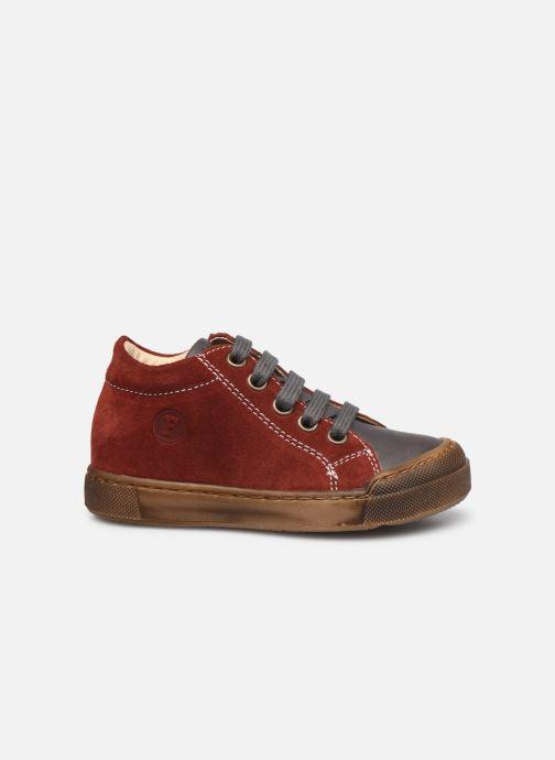 Sneaker Naturino Snopes Zip rot ansicht von hinten