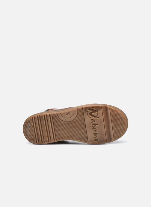 Sneaker Naturino Lovan Zip braun ansicht von oben