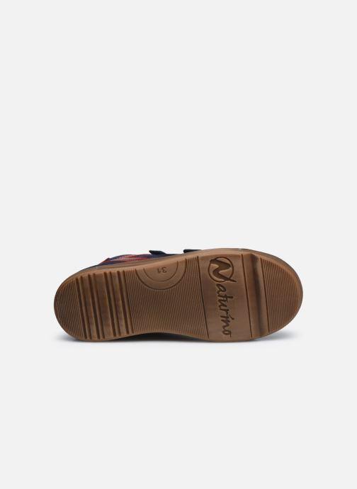 Sneakers Naturino Heist VL Azzurro immagine dall'alto