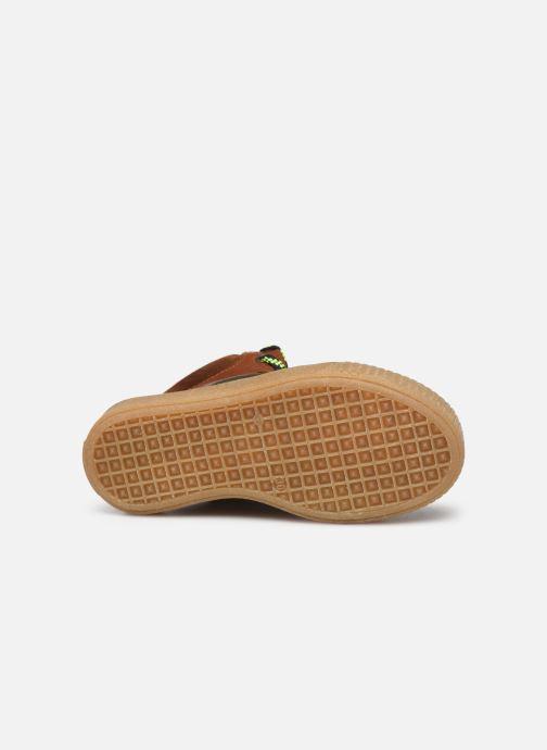 Sneakers Acebo's 5405 Marrone immagine dall'alto