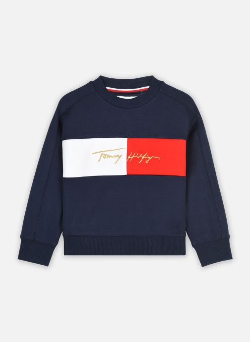 Kleding Accessoires Icons Logo Crew Sweatshirt