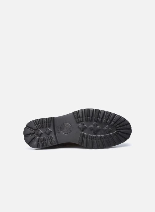 Chaussures à lacets Base London RENE Marron vue haut