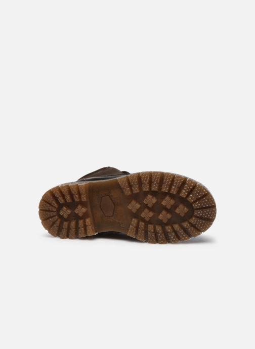 Zapatos con cordones Bisgaard Hector Marrón vista de arriba