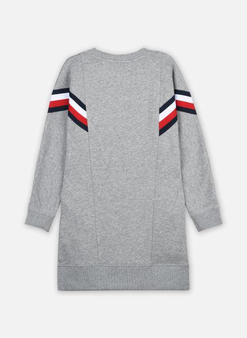 Vêtements Tommy Hilfiger Global Stripe Hwk Dress L/S Gris vue portées chaussures