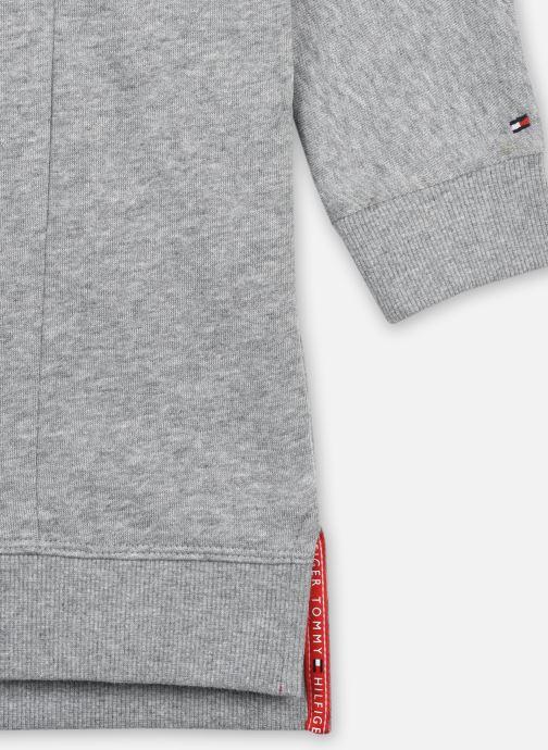 Vêtements Tommy Hilfiger Global Stripe Hwk Dress L/S Gris vue face