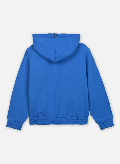 Kleding Tommy Hilfiger Essential Hooded Sweatshirt Blauw model
