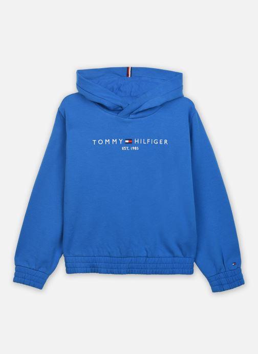 Vêtements Tommy Hilfiger Essential Hooded Sweatshirt Bleu vue détail/paire