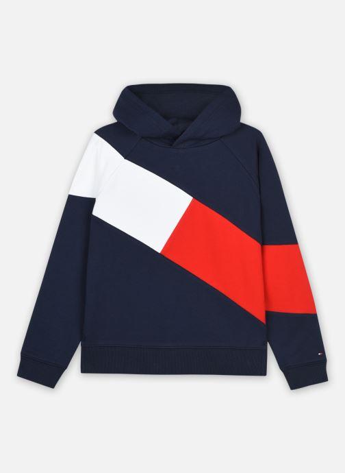 Vêtements Tommy Hilfiger Flag Blocking Hoodie Bleu vue détail/paire