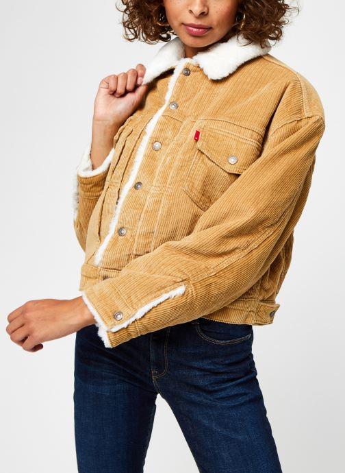 Vêtements Levi's New Heritage Cord Truckr Marron vue droite