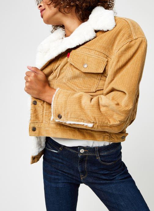 Vêtements Levi's New Heritage Cord Truckr Marron vue détail/paire