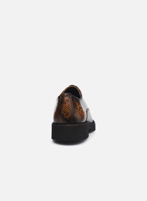 Scarpe con lacci Dorking D8379 Xinia Marrone immagine destra