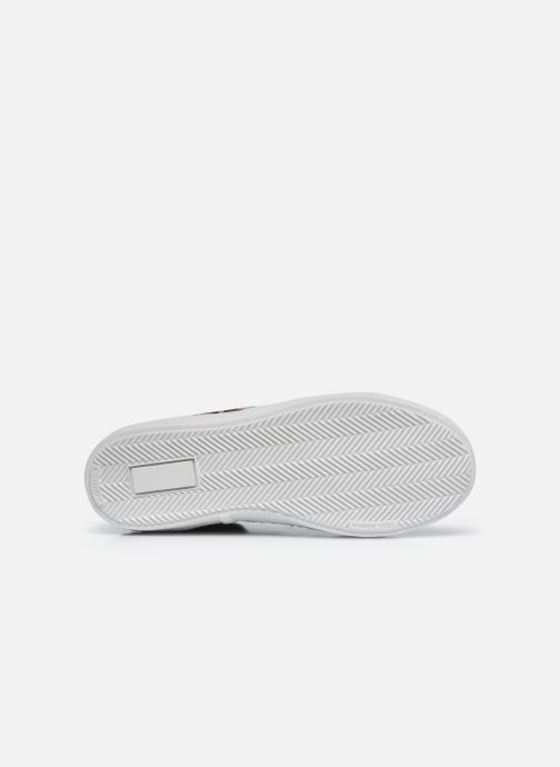Sneakers Pom d Api Top Zip Lace Bruin boven