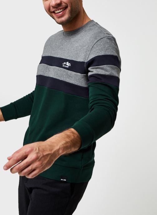 Vêtements Only & Sons Onsdamas Life Crew Neck Vert vue détail/paire