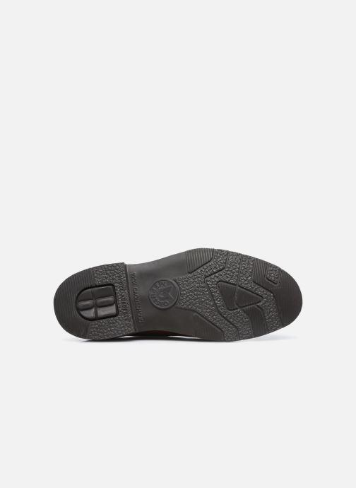 Zapatos con cordones Mephisto MARLON C Marrón vista de arriba