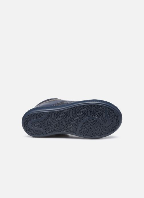 Bottines et boots Aster Fransham Bleu vue haut