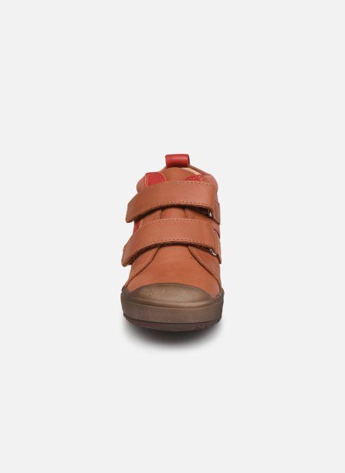 Sneakers Aster Bigbo Bruin model