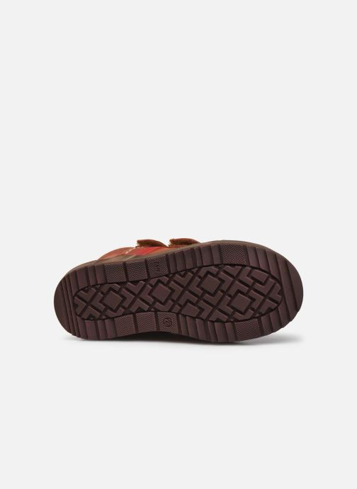 Sneakers Aster Bigbo Bruin boven