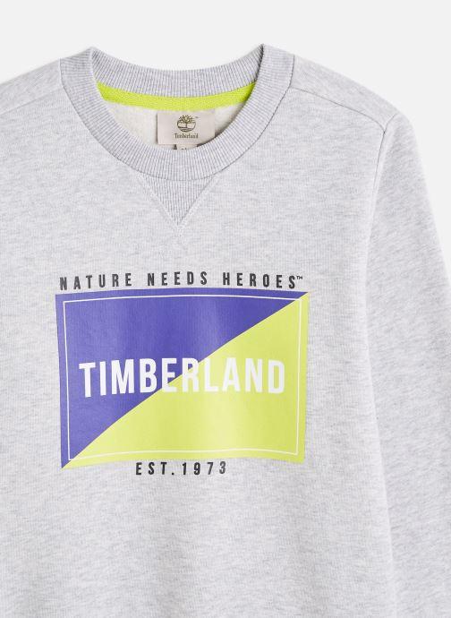 Vêtements Timberland T25R41 Gris vue portées chaussures