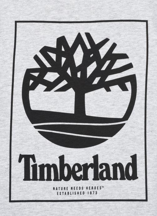 Vêtements Timberland T45815 Gris vue face