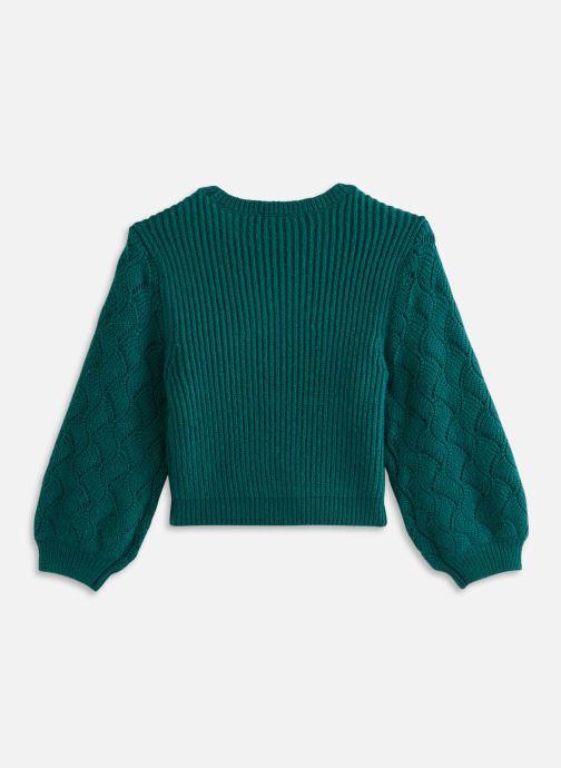 Vêtements 3 Pommes Pull 3R18044 Vert vue bas / vue portée sac