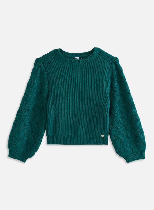 Vêtements 3 Pommes Pull 3R18044 Vert vue détail/paire