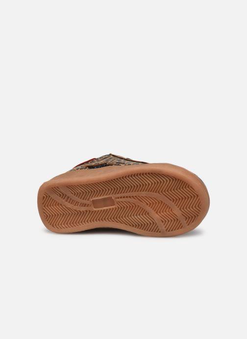 Stiefeletten & Boots Bopy Xavita Kouki beige ansicht von oben