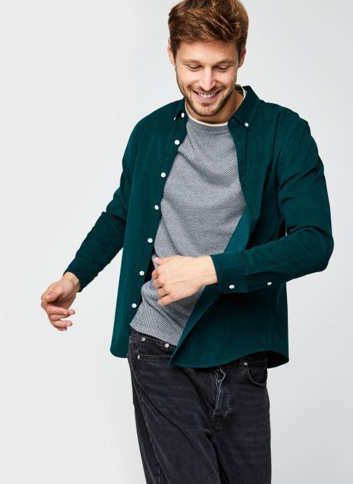 Vêtements Farah Fontella Cord Ls Slm Bd Vert vue détail/paire