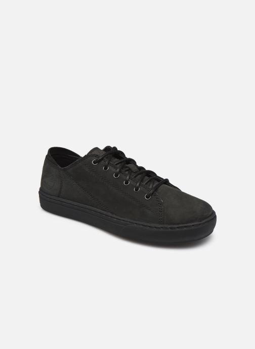 Sneaker Timberland Adv 2.0 Cupsole Modern Ox schwarz detaillierte ansicht/modell